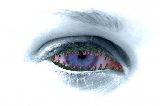 spring-eye
